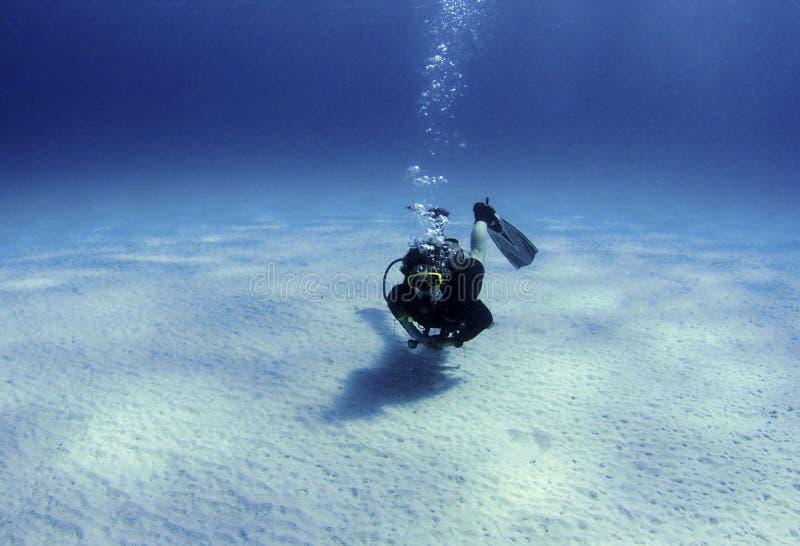 Diver over white sand stock photos