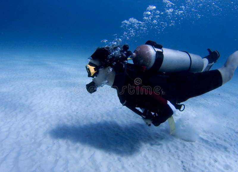 Diver over white sandy bottom stock photography