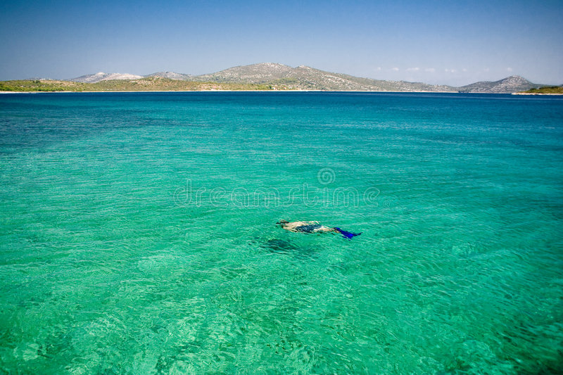 Diver in the paradise sea stock images