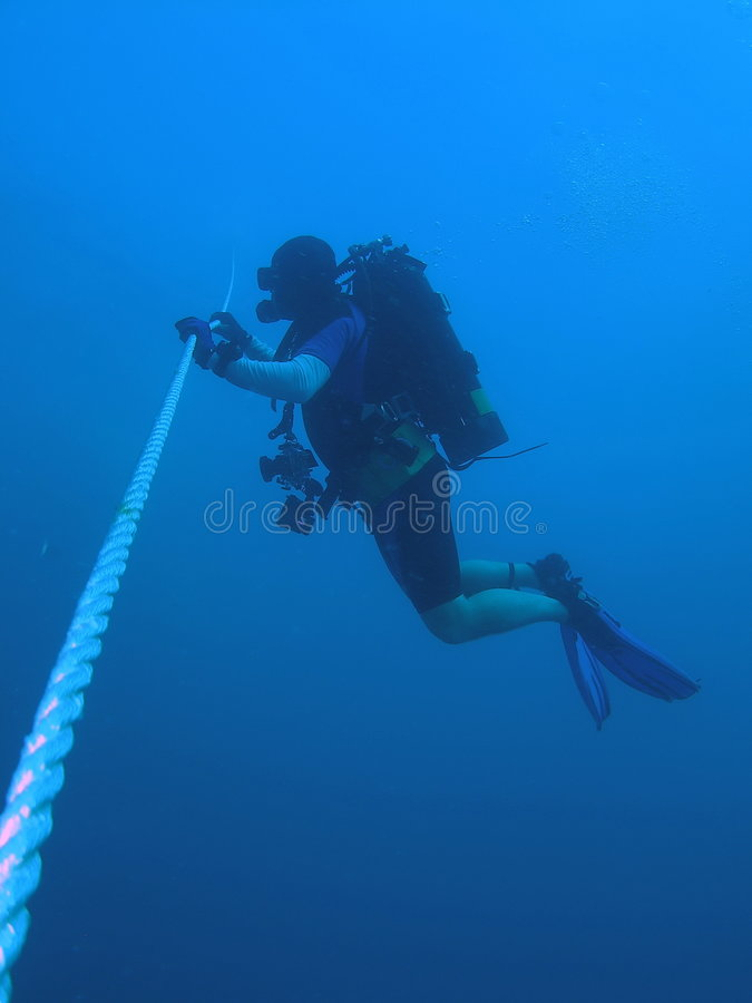 Diver at safety Stop stock photos