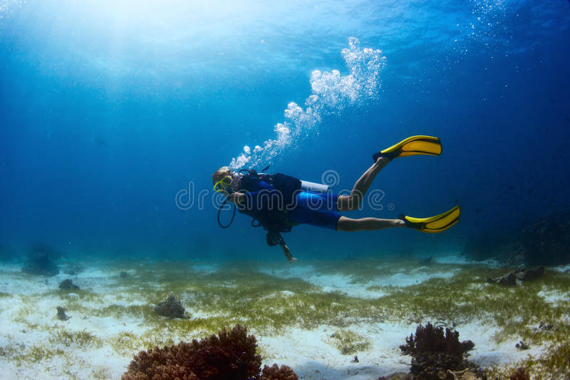 Diver royalty free stock photography