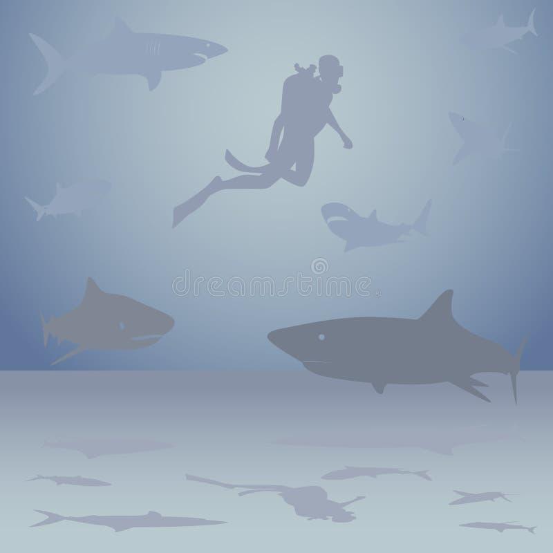 Diver among sharks