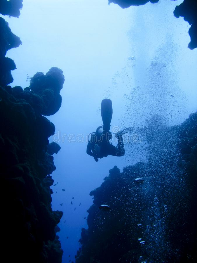 Diver silhouette at an underwater canyon in Dahab, Egypt. At the spectacular divesite The Canyon in Dahab, Egypt, a scuba diver is swimming in between the reef royalty free stock images