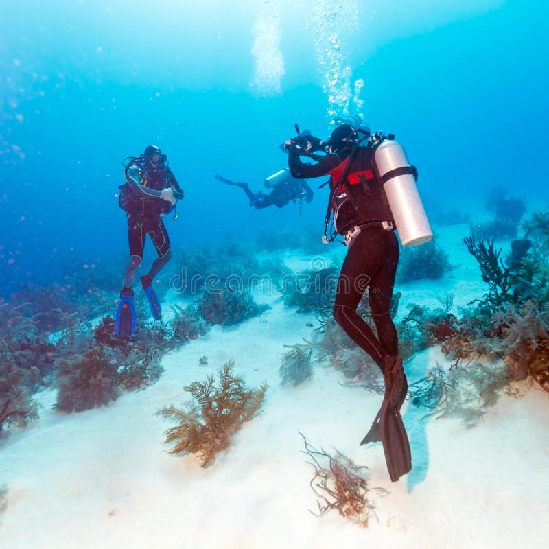 Diver Takes Photos Underwater stock photography