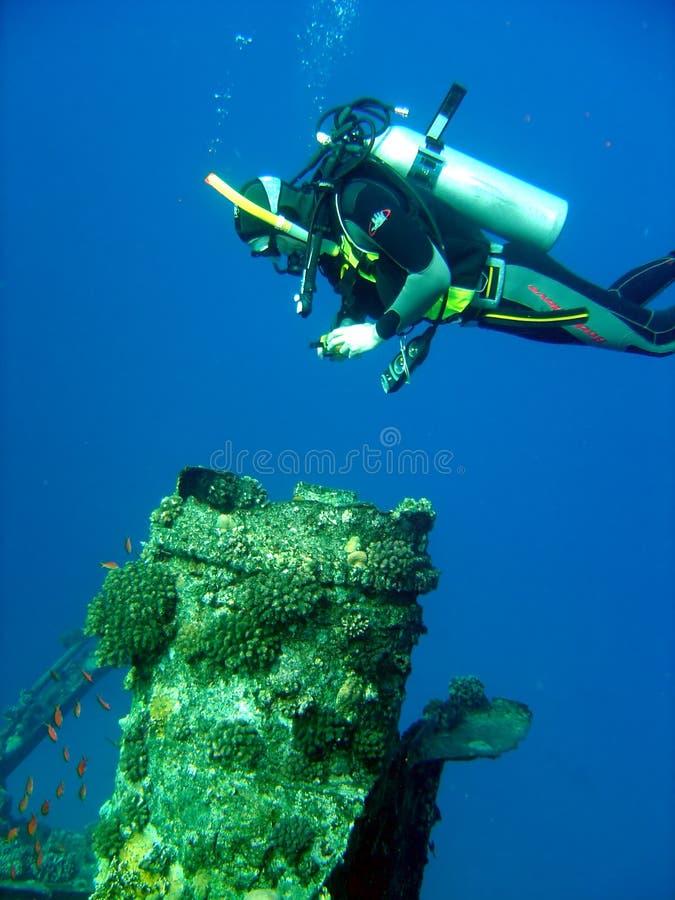 Diver taking photo royalty free stock photos