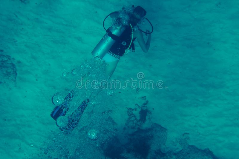 Diver underwater royalty free stock photography