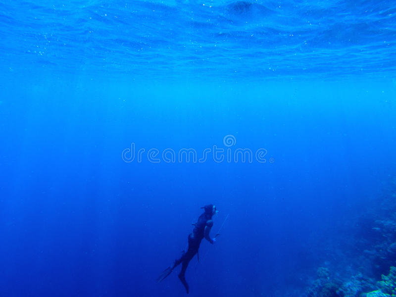 Diver underwater in deep blue sea. Man in diving gear dives up to water surface. royalty free stock images