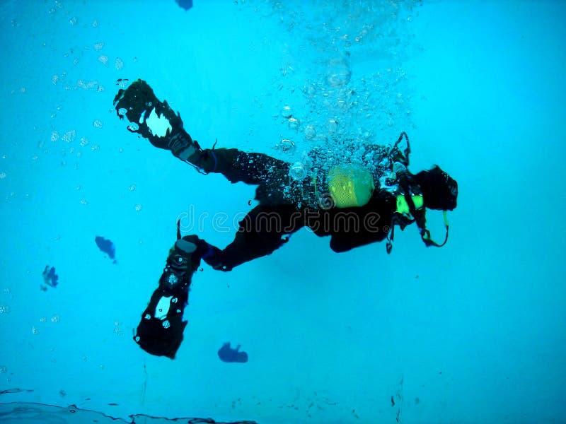 diver2 库存照片