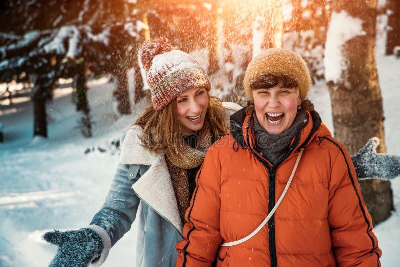 Diversão da neve do inverno foto de stock royalty free