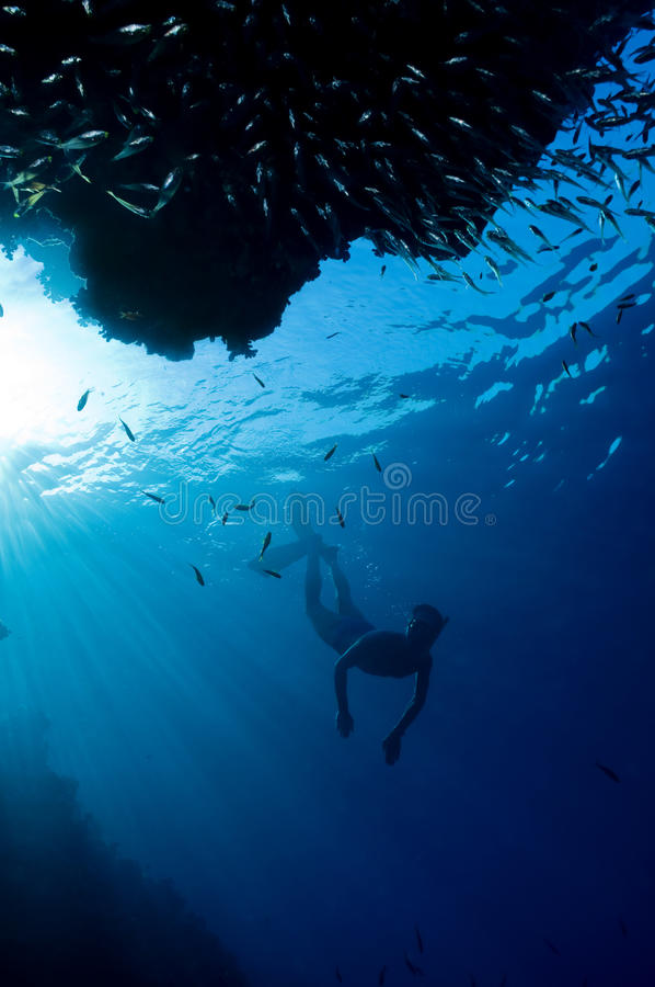 Download Divers in the blue stock photo. Image of background, ocean - 14862552