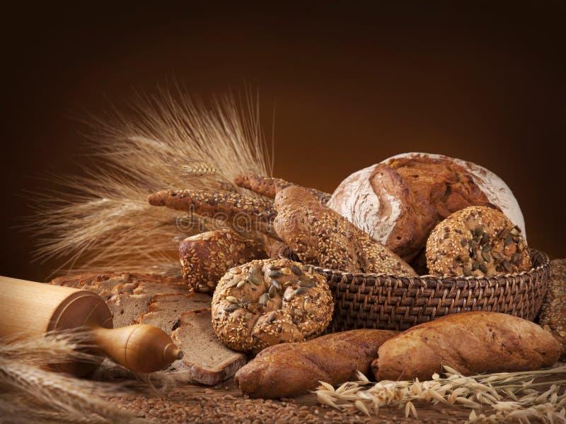 Divers brood royalty-vrije stock afbeeldingen