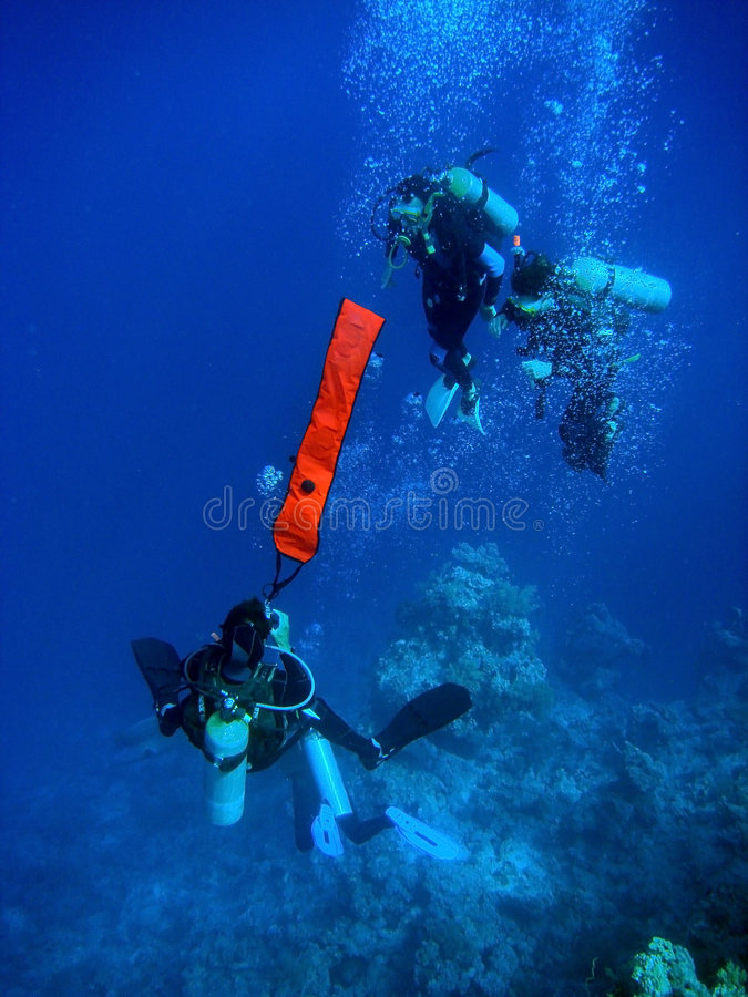 Divers deploying buoy stock image
