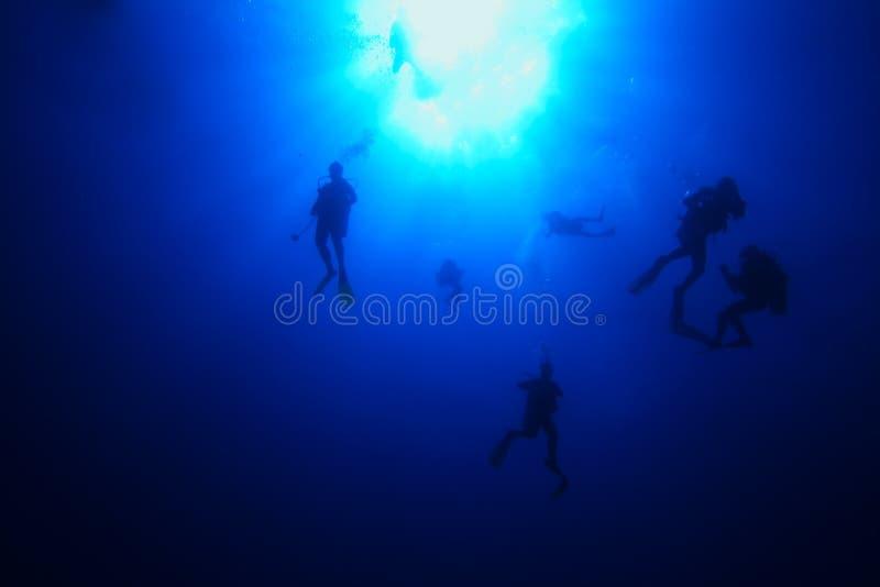 Download Divers descending stock image. Image of bubbles, seychelles - 6773661