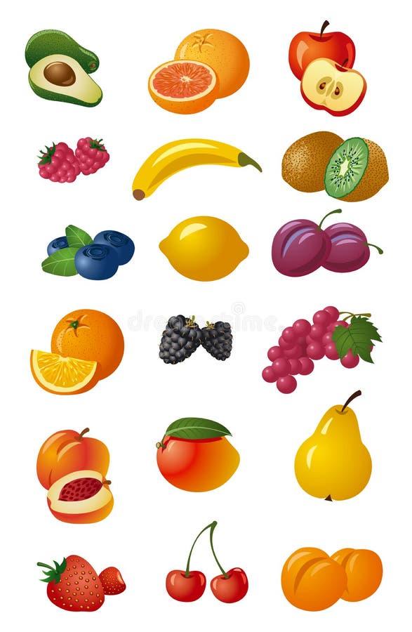divers fruits frais illustration de vecteur