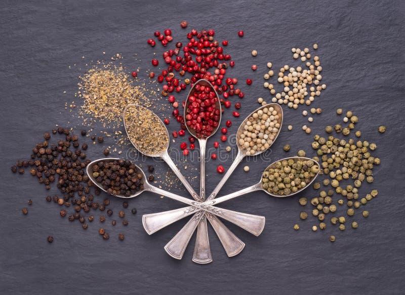 Divers genres de grains de poivre dans des cuillères d'argent photo stock