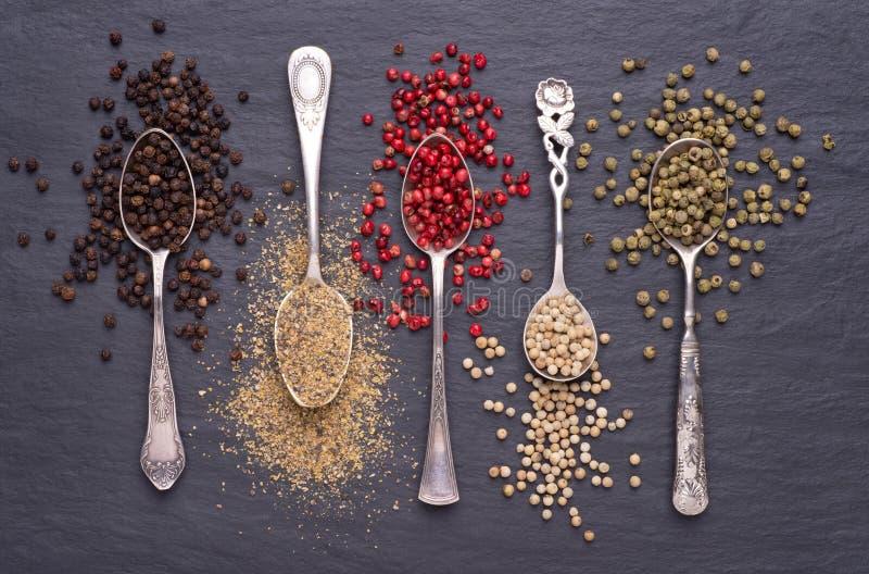 Divers genres de grains de poivre dans des cuillères d'argent photographie stock