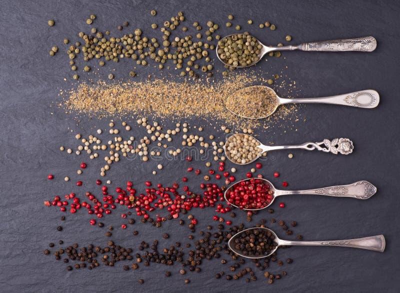 Divers genres de grains de poivre dans des cuillères d'argent image stock