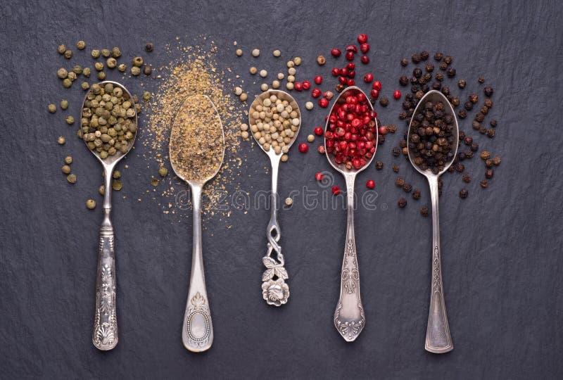 Divers genres de grains de poivre dans des cuillères d'argent photos libres de droits