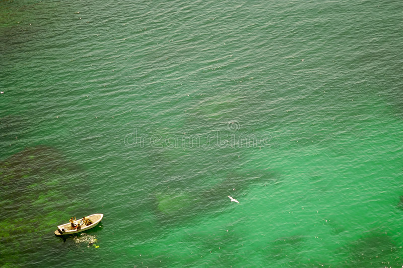 Divers in green see. stock image