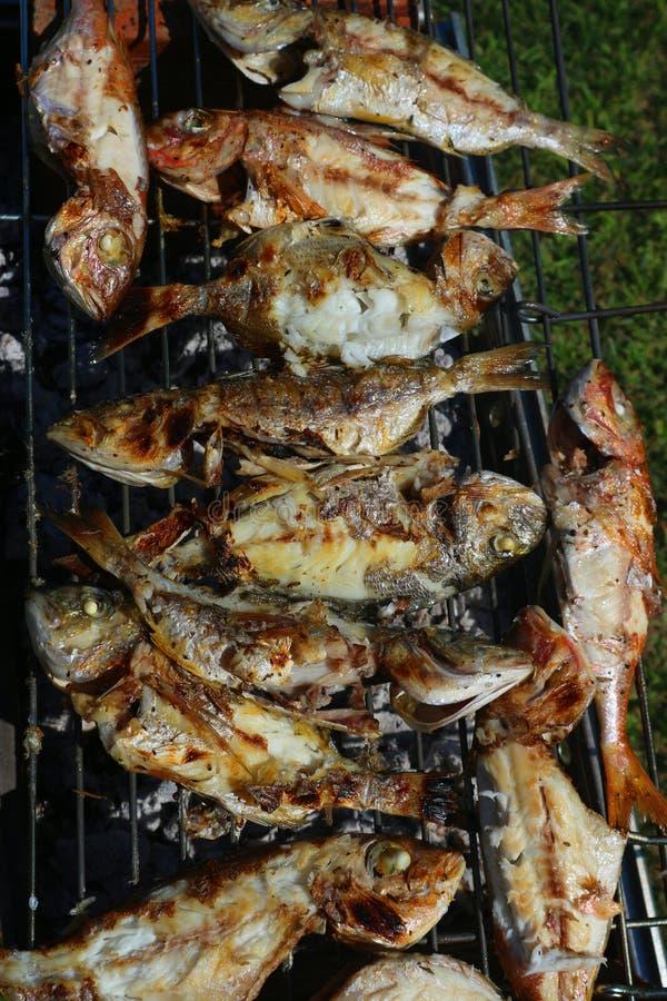 Divers poisson frais sur le gril photographie stock