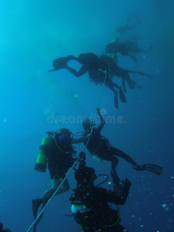 Divers safety stop royalty free stock image