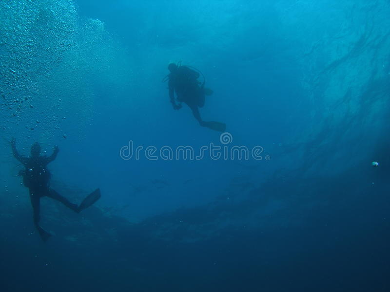 Divers at the Surface royalty free stock image