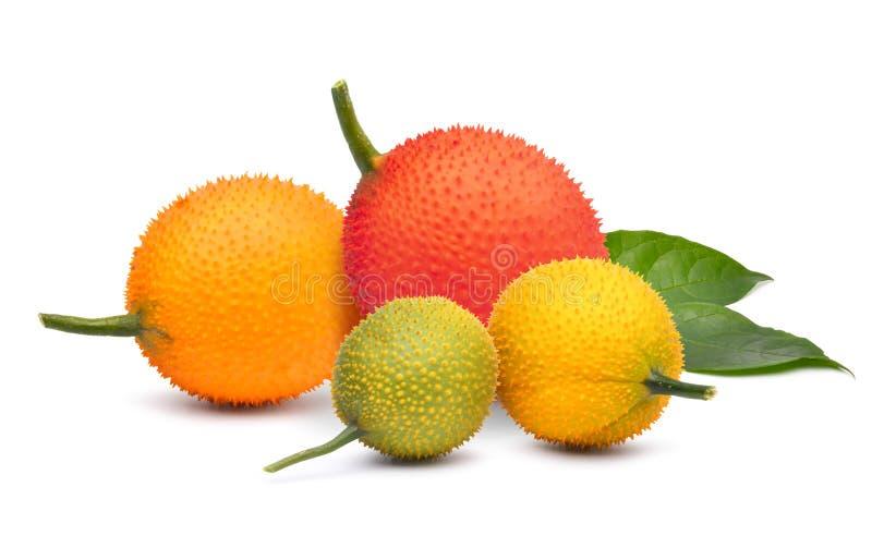 Divers van Gac-fruit met groen blad stock afbeeldingen