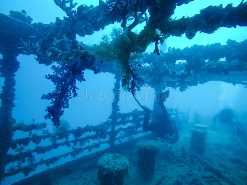 Divers Wrak die met Koralen duiken die op het Wrak in het Rood groeien stock foto's