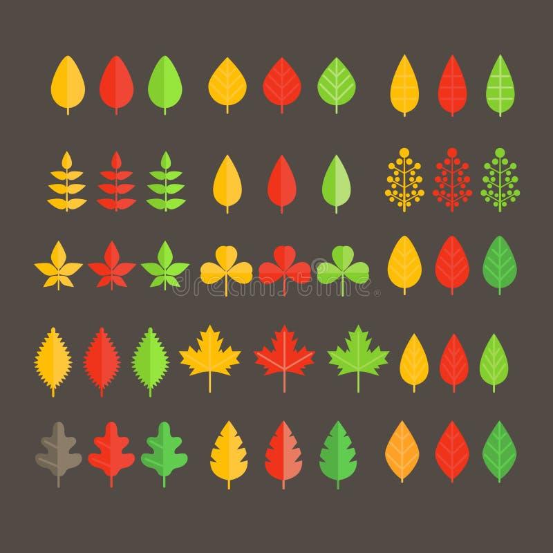 Diversa colección de la hoja ilustración del vector