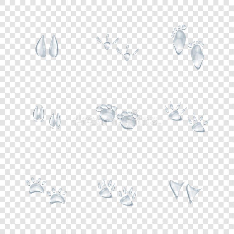 Diversa forma de la huella animal del vector realista de los descensos del agua aislado en el fondo de la transparencia, muchos f ilustración del vector
