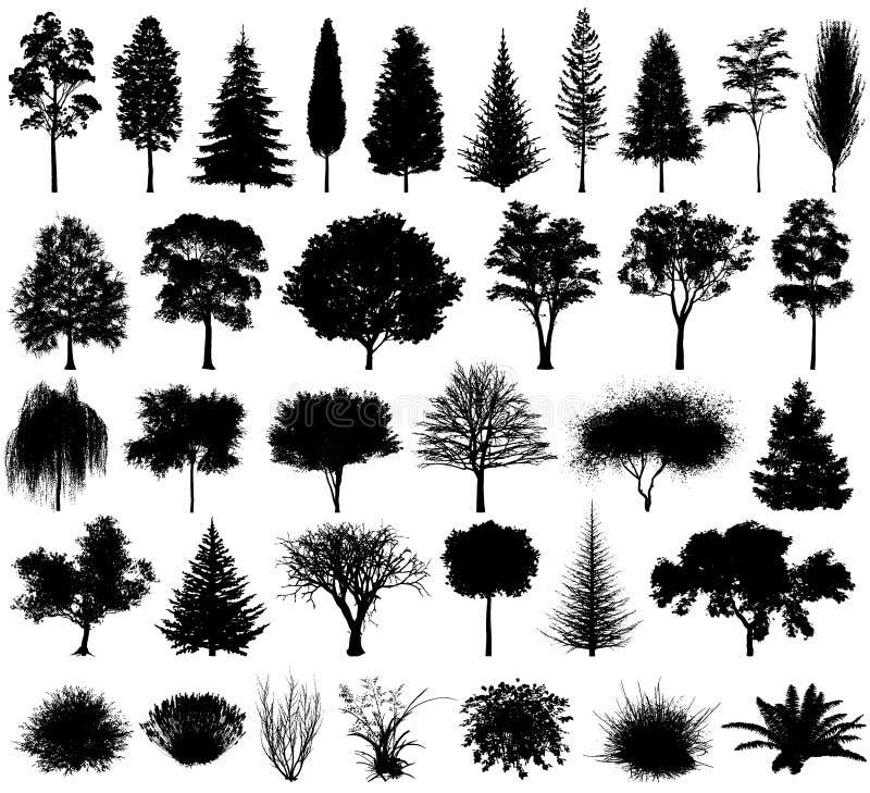 Diversa silueta de los árboles y de los arbustos del vector EPS 10 ilustración del vector
