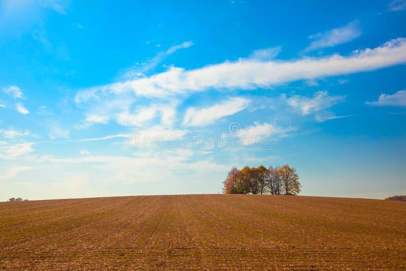 Diversas árvores multi-coloridas no horizonte longe dos campos colhidos imagens de stock