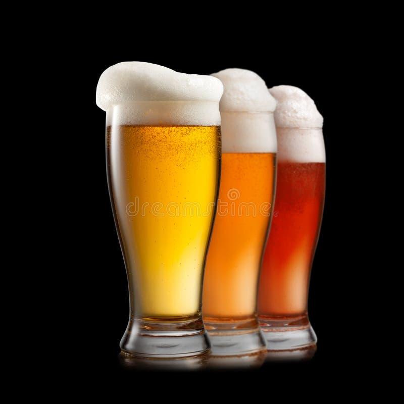 Diversas clases de la cerveza en los vidrios aislados en el fondo blanco foto de archivo