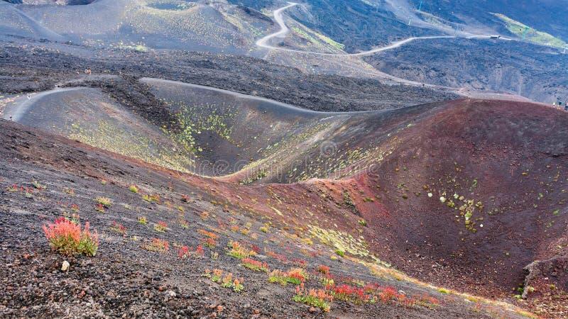 Diversas crateras em Monte Etna em Sicília foto de stock