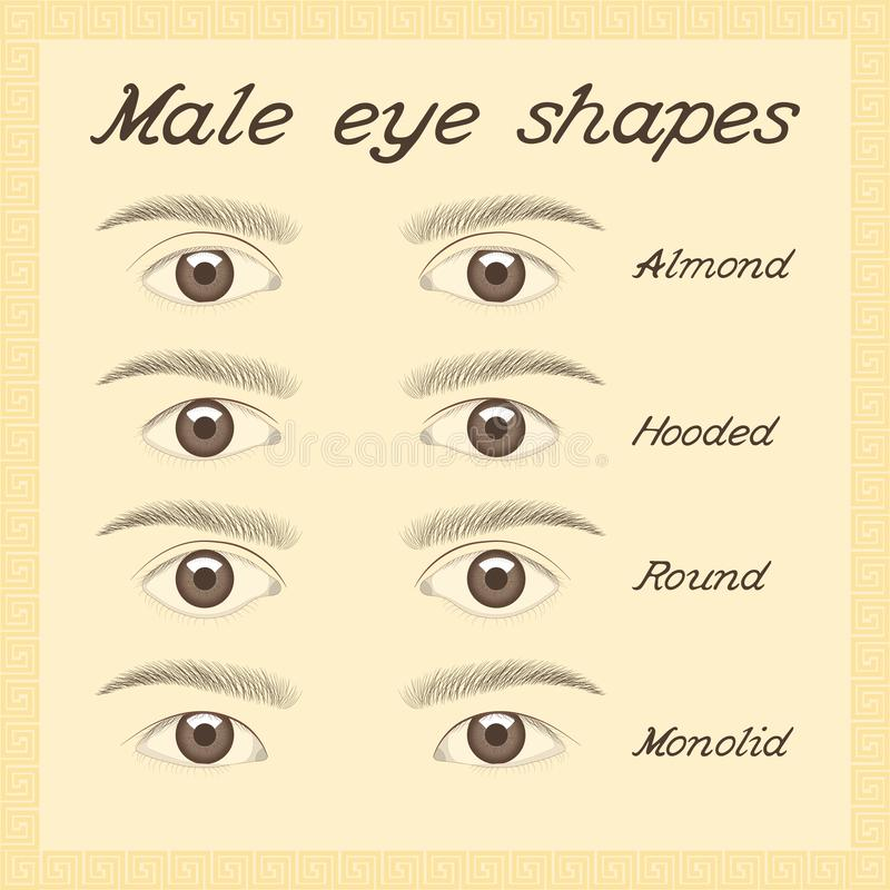 Diversas formas masculinas del ojo stock de ilustración