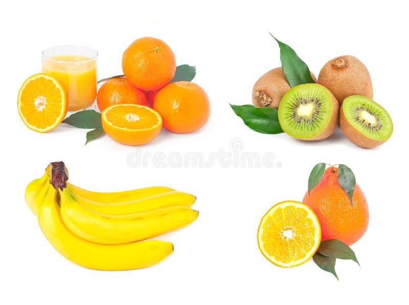 Diversas frutas foto de stock royalty free