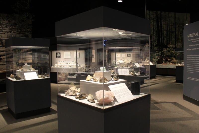Diversas grandes caixas do vidro e do metal com minerais, museu do estado, Albany, 2016 fotografia de stock