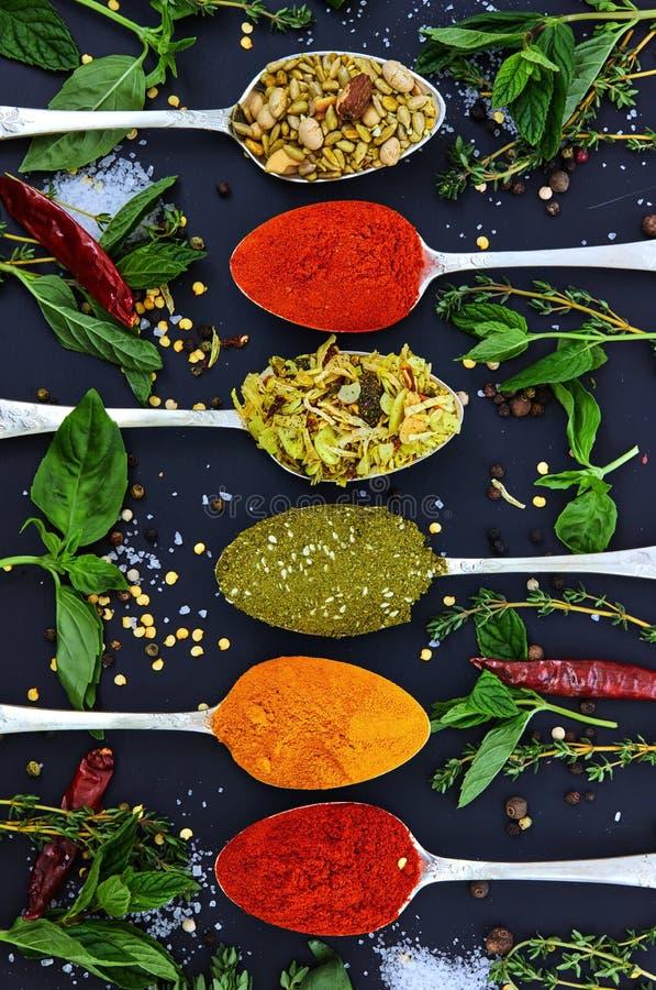 Diversas hierbas y especias coloridas para cocinar en fondo oscuro foto de archivo libre de regalías