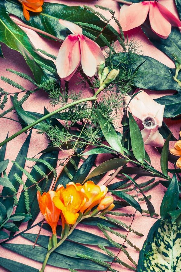 Diversas hojas tropicales verdes y flores exóticas, endecha plana de la naturaleza en fondo del rosa en colores pastel imagen de archivo