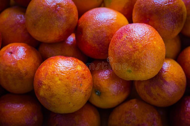 Diversas laranjas vermelhas frescas apenas foram escolhidas da árvore e postas em uma caixa de cartão para vender ou fazer o suco imagem de stock royalty free