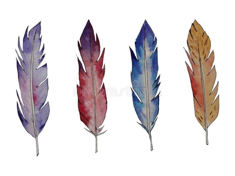 Diversas plumas de la acuarela ilustración del vector