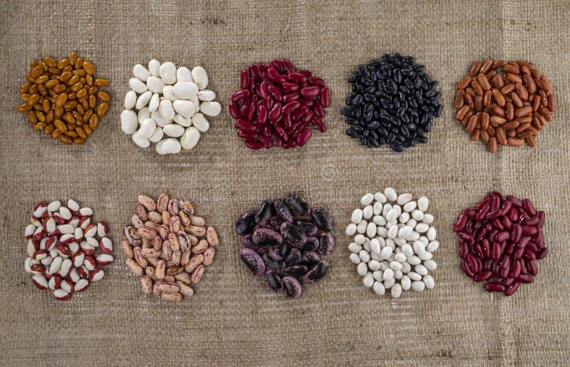 Diversas variedades de habas en el fondo del despido fotografía de archivo libre de regalías