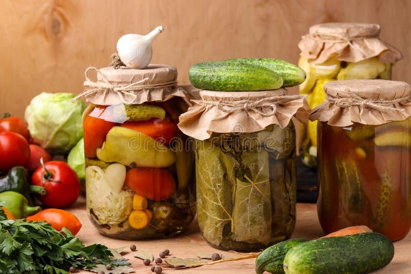 Diversas verduras adobadas: pepinos, tomates, col, calabacín y pimientas, pepinos en hojas de la uva, pepinos con imagen de archivo