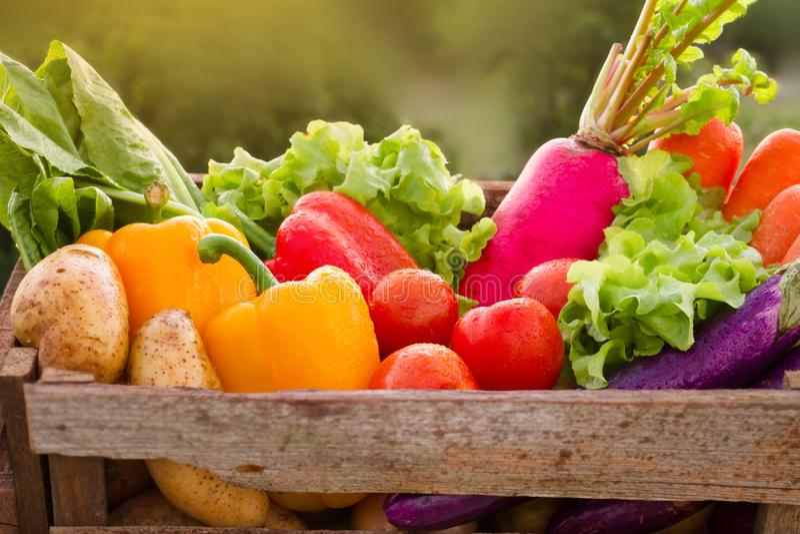 Diversas verduras frescas en cesta de madera imagen de archivo libre de regalías
