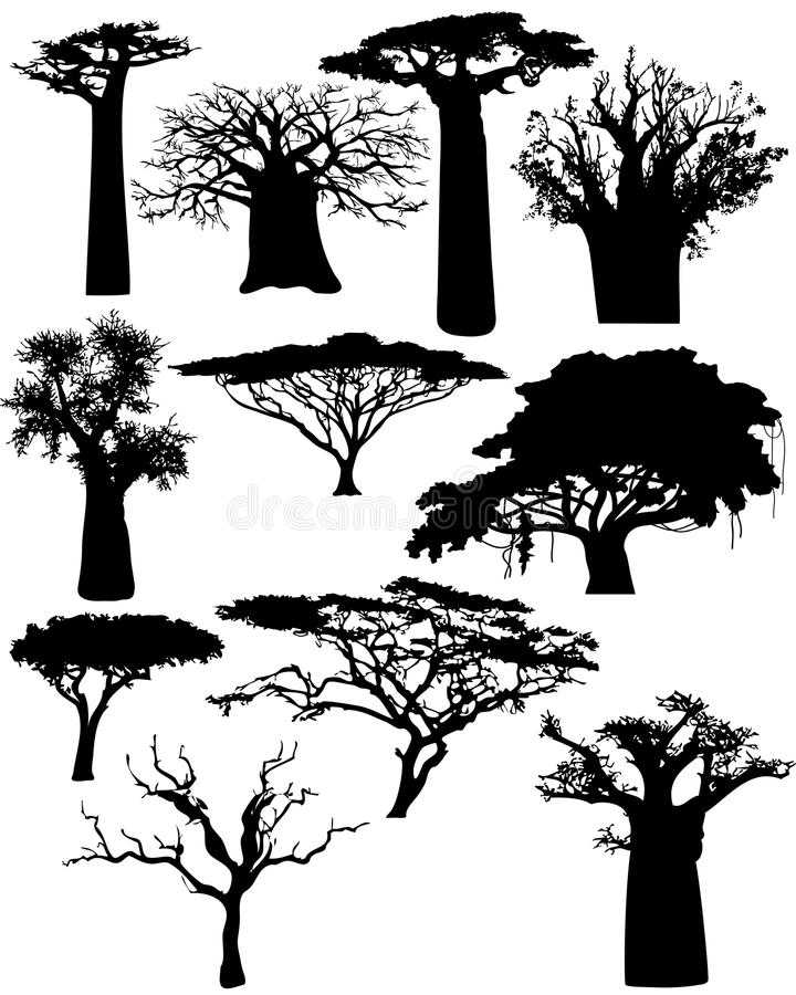 Diverse Afrikaanse bomen royalty-vrije illustratie