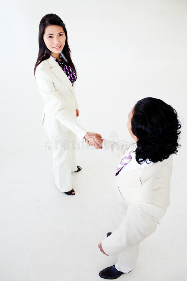 Download A Diverse Business People Greeting Each Other Stock Photo - Image: 12041770