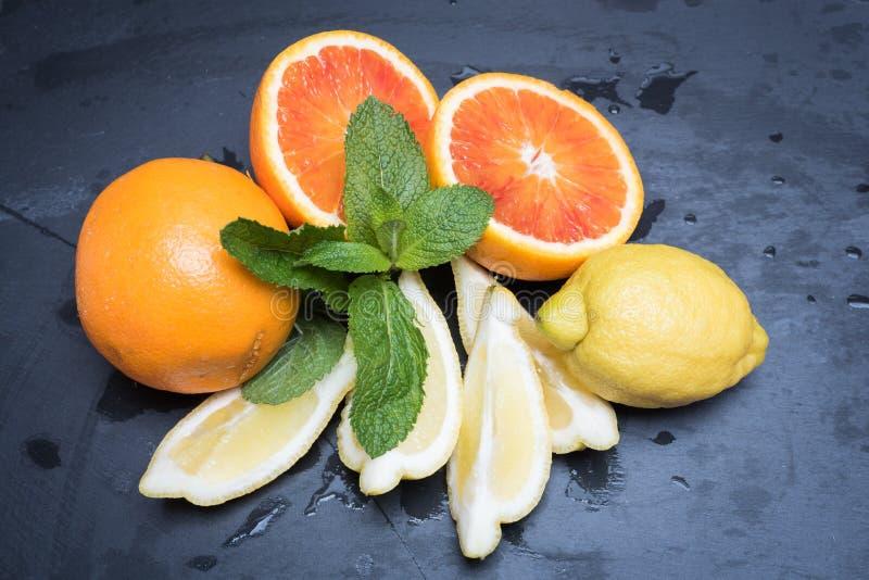 Diverse citrusvruchten en munt stock foto
