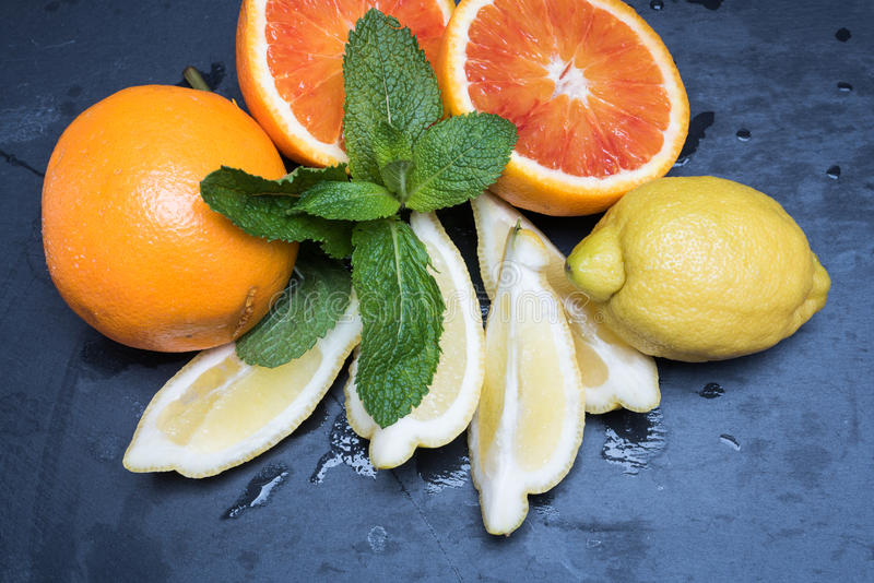 Diverse citrusvruchten en munt stock afbeelding