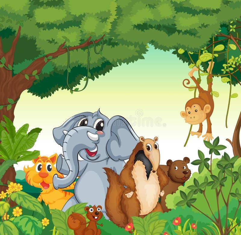 Diverse dieren vector illustratie