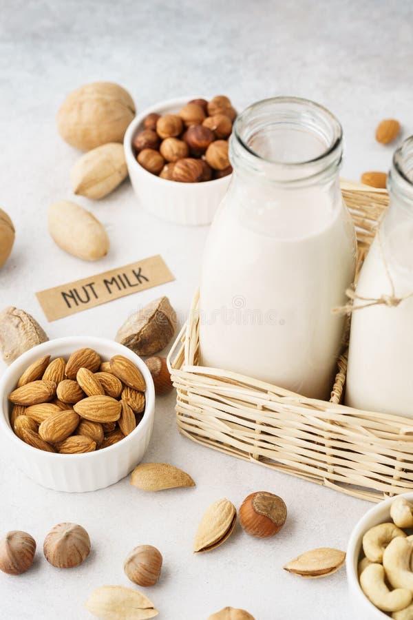 Diverse eigengemaakte nootmelk en ingrediënten Alternatieve melk stock afbeelding